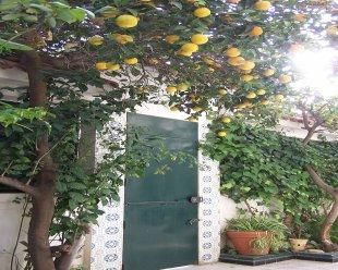 annaba_Algérie