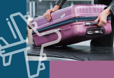 À l'étranger, la Scolarité Complémentaire Internationale du CNED est la garantie d'un retour gagnant en France !