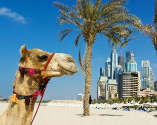 Dubai2-HP