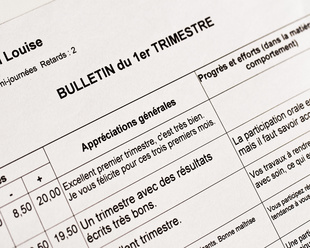 bulletins scolaires
