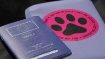 Emmener son animal dans un pays européen