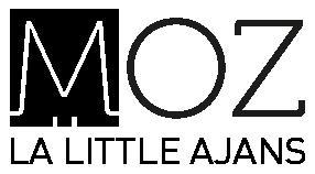 Logo_moz_BW
