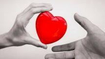 Don d'organes : tous donneurs par défaut