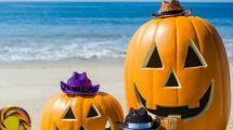 Halloween, hors cadre, organiser une chasse aux bonbons