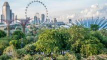 Vivre à Singapour (2ème partie)