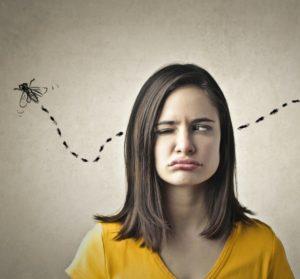 Les aventures de Pat Notre Expat: Si Pat a les abeilles, c'est à cause des mouches!!!