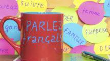 Par-quel-bout-prendre-le-francais-a-la-maison-559x520.jpg