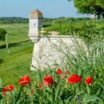 Trois villages à ne pas manquer en France cet été