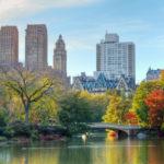 Expatriation-Choisir-une-ecole-a-New-York-ou-dans-sa-region-559x520