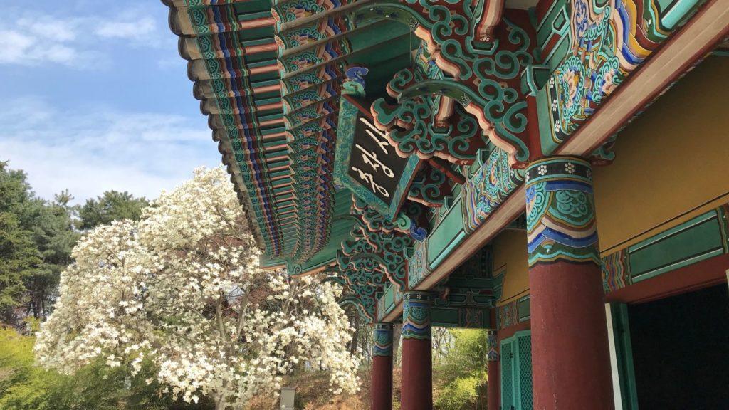 Expatriation Seoul Personal Traveler