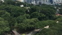 Coconavirus-vu-de-Singapour-UNE femmexpat 559x520
