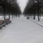 Moscou-se-confine-Faire-des-choix-UNE femmexpat 559x520-5